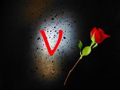 V Design