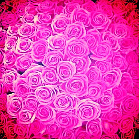 Blending Roses
